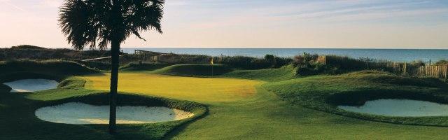 golf--turtle-point