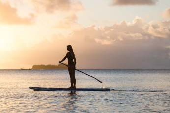 5. Paddle Boards