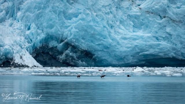 Alaska2019-121.jpg