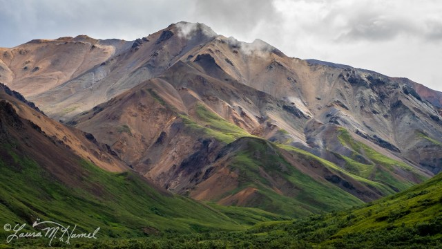 Alaska2019-227.jpg
