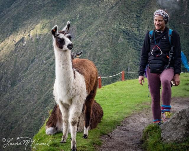 Peru201819-147.jpg