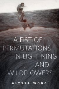 A Fist of Permutations in Lightning and Wildflowers by Alyssa Wong
