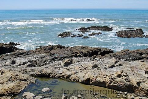 5cali coast
