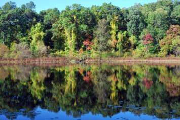 hidden-lake-photos-laura-miller-artist-livividli6-2