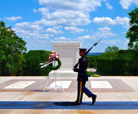 veterans-day-tomb-unknown-soldier-laura-miller-artist