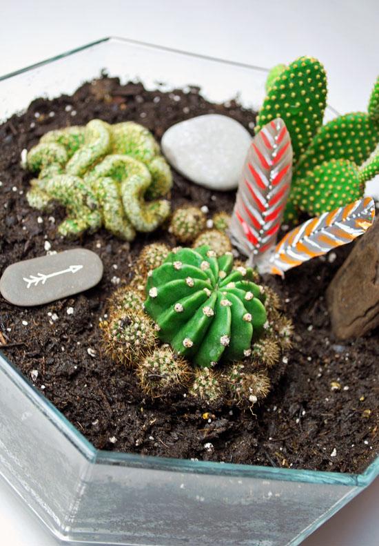 3tribal cactus mini garden