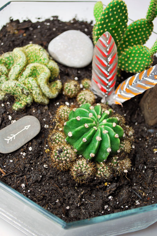8tribal cactus mini garden