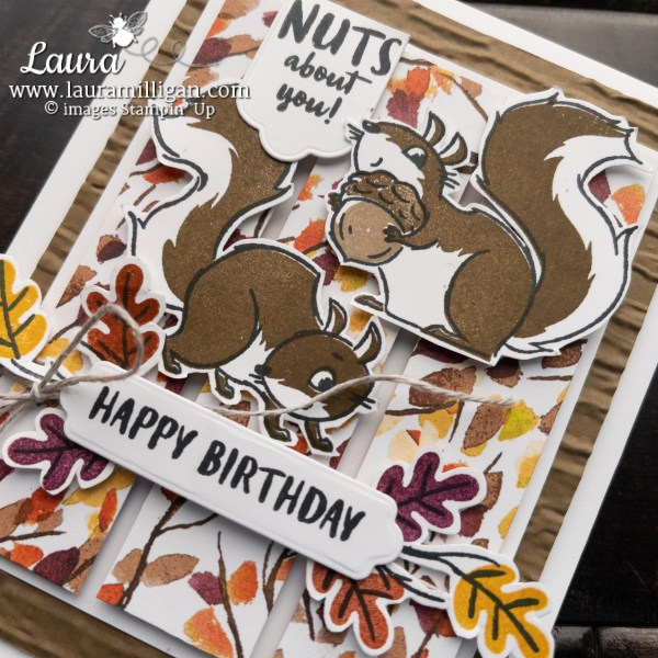 Nuts About Squirrels by Stampin' Up! Birthday Card by Laura Milligan, I'd Rather Bee Stampin'