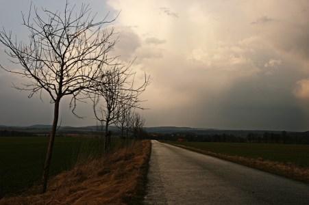 Nach dem Gewitter/After storm