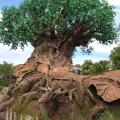 Arbol de la vida - Animal Kingdom