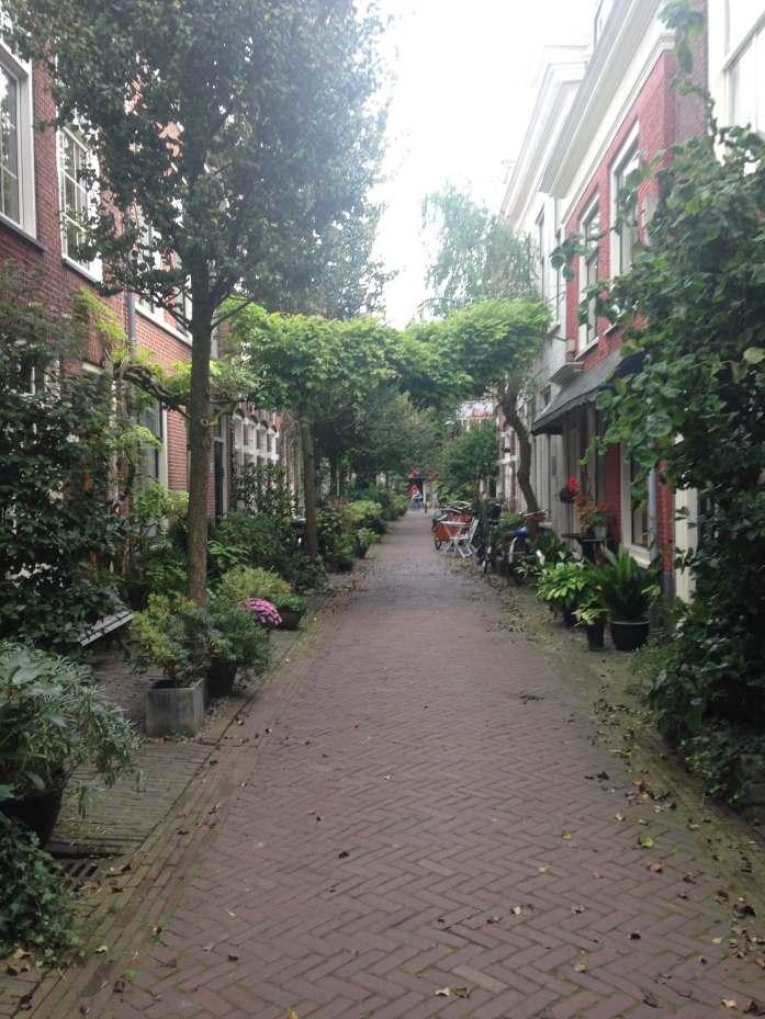 Haarlem, alrededores de Amsterdam