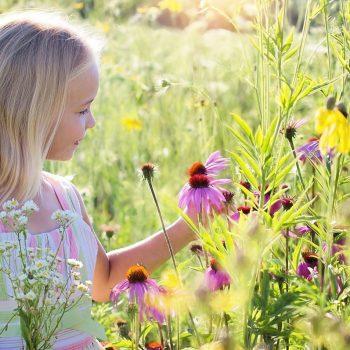 elaxation à l'école, pleine conscience enfant, yoga enfant, concentration et régulation des émotions enfants, auray, morbihan