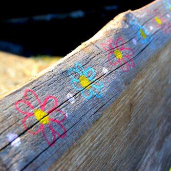 wood-3559250_1920