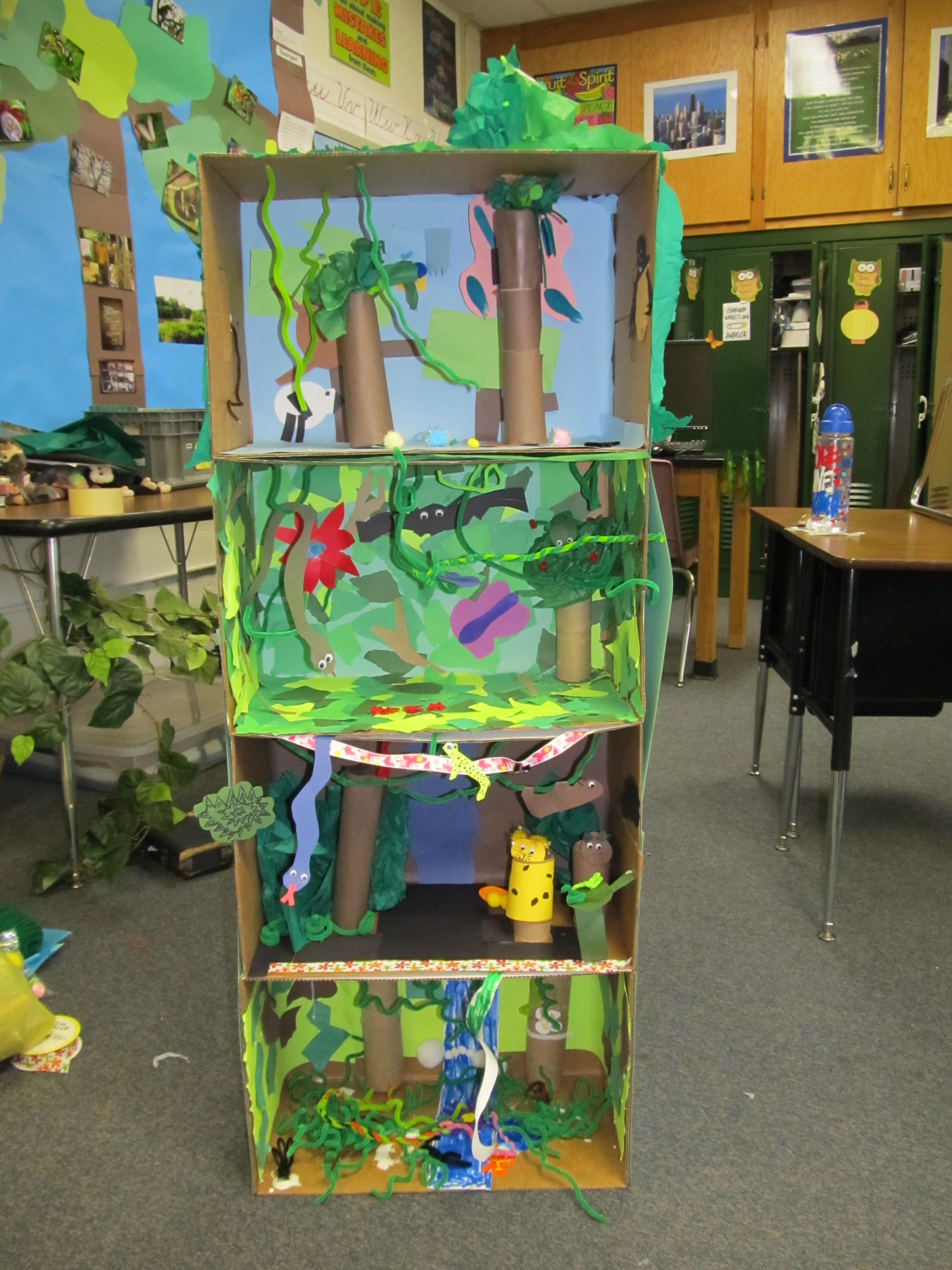 Tropical Rainforest Study Week 1 Miss R S Blog