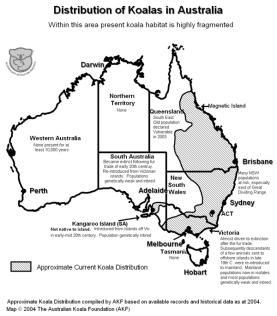 http://www.savethekoala.com/about-koalas/distribution