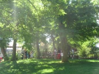 Jardin Fort 2013 (252)