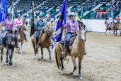 State 4-H Horse Show 2014
