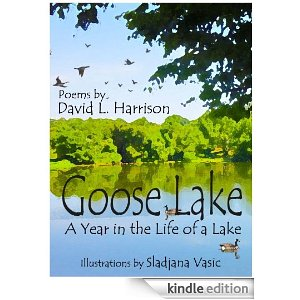 Goose Lake, A Year in the Life of a Lake
