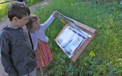 Story Trail Kids.jpg