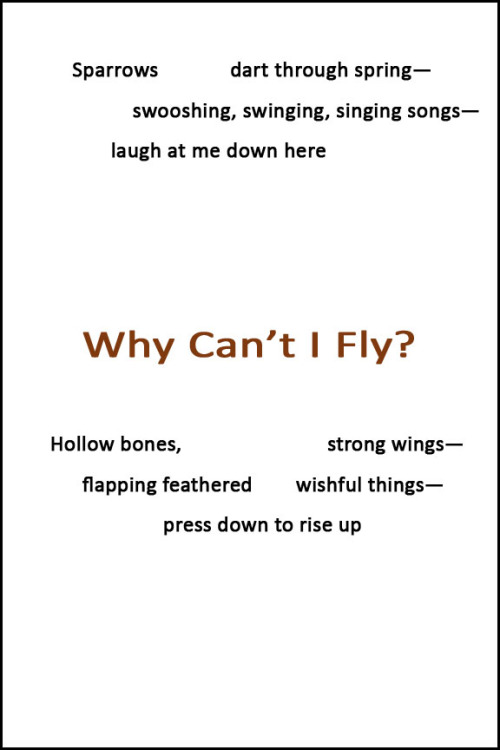 Why Can't I Fly? [Why-ku]