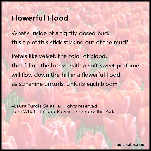 Flowerful Flood