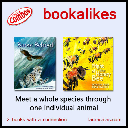 Meet-a-whole-species-through--one-individual-animal