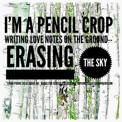 I'm a pencil crop, from Riddle-ku