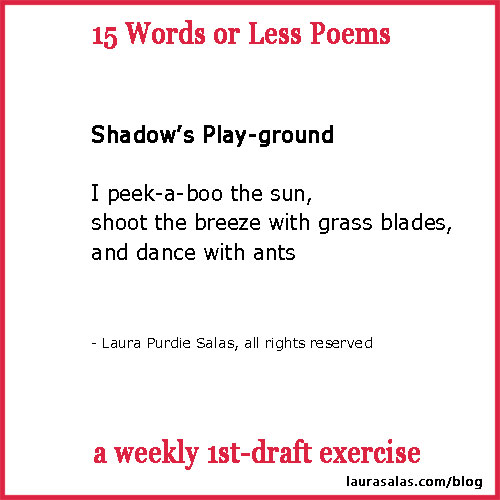 shadow-playground