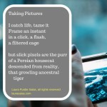 taking pictures, an imagepoem by Laura P. Salas
