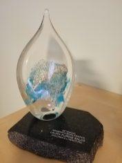 Minnesota Book Award for BOOKSPEAK!