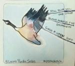 Goose #poemsketch