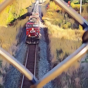 Train Through Fence