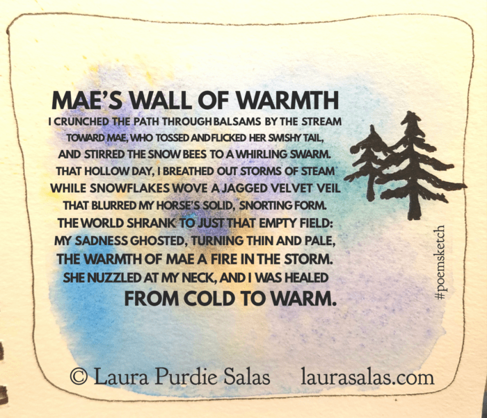 Mae's Wall of Warmth