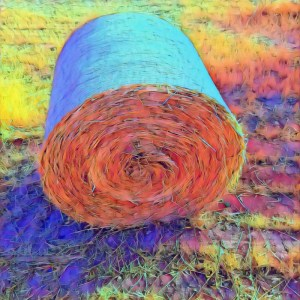 Hay! [15 Words or Less]