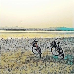 Bikes at a Salt Lake [15 Words or Less]