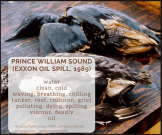 oil spill diamante