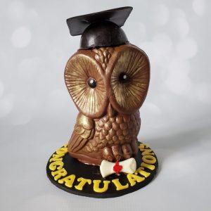 Chocolate Owl with Graduation Hat