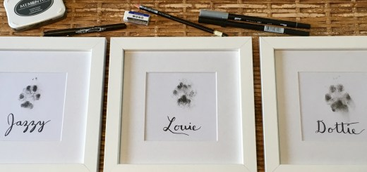 Framed puppy prints with Calligraphy name and supplies