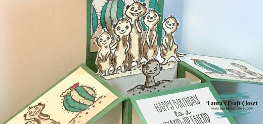 Meerkat pop up box