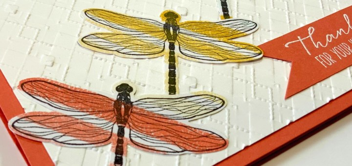 Playful striped dragonflies card detailed using embossed background and colorful dsp