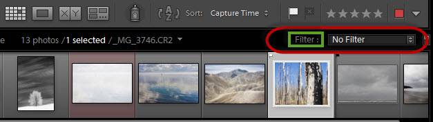 Lightroom filmstrip filter