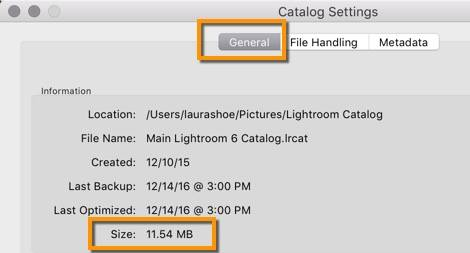 Lightroom Catalog Settings - Catalog Size