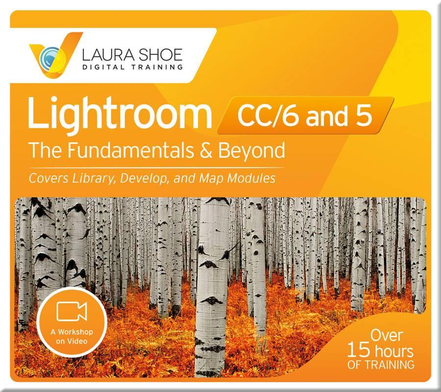 Lightroom Fundamentals & Beyond