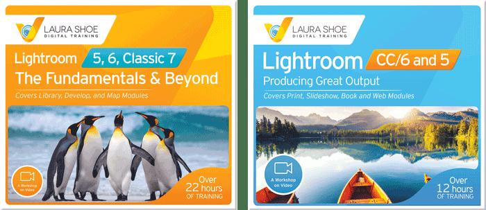 Lightroom Video Training