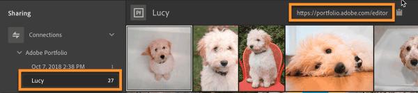Accessing Adobe Portfolio from Lightroom CC