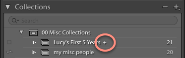 Designation of target collection in Lightroom Classic CC