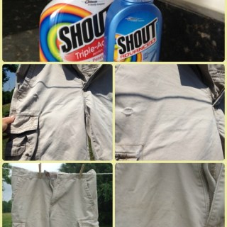 Shout Stain Remover Review