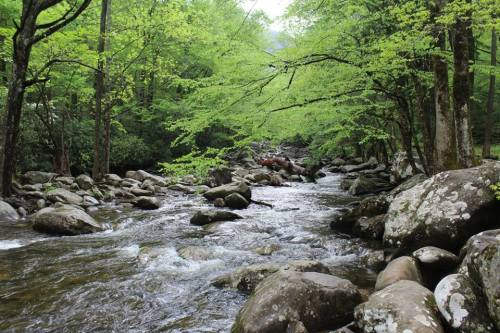 5 Top Picnic and Scenic Spots in the Smokies-Chimney