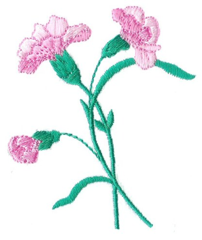 Carnations - No. 2