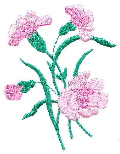 Carnations - No. 4